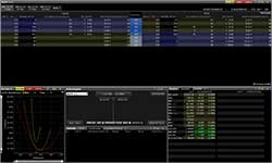 optiontrader-screen